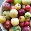 Apples166