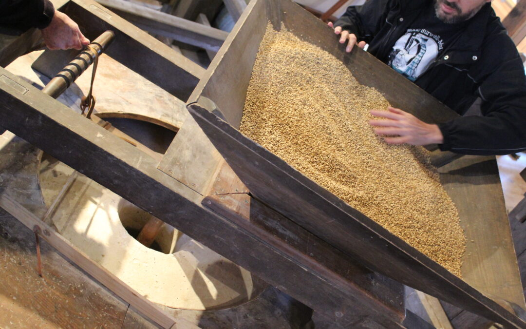 NEWS: Grinding Out a Historic Lager
